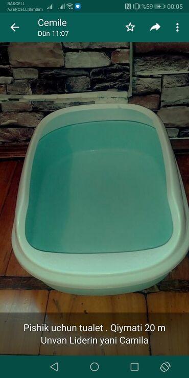 pishik - Azərbaycan: Pishik uchun tualet . Qiymati 20 m Unvan Liderin yani Camila