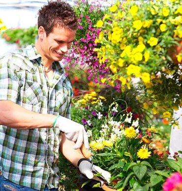 Требуется садовник в садик требования в Бишкек