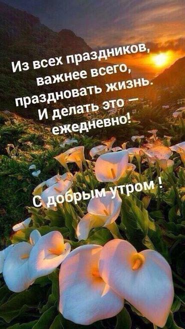 Требуется срочно кассир можно без опыта в Бишкек