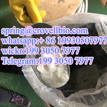 Other - Czech Republic: CAS 62-44-2 Phenacetin with high purity and lowest price +86