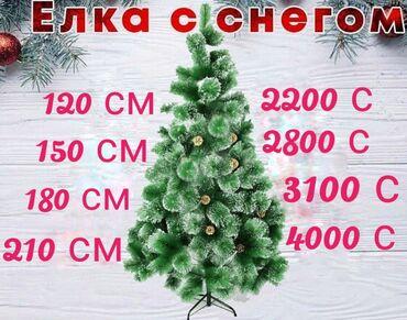 гор юст бишкек в Кыргызстан: Новогодние Ёлки в наличии.Новый год не за горами успей купить ёлку к