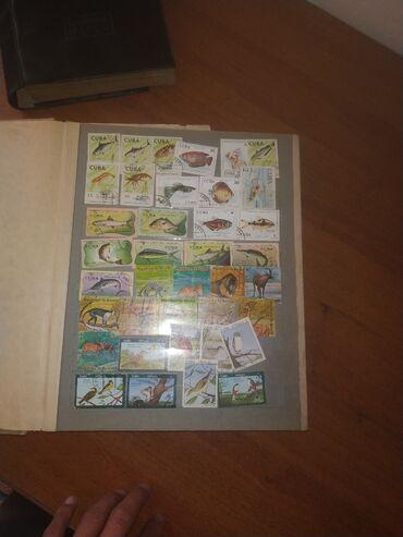 Марки - Бишкек: Срочно продаю для коллекционеров.Хорошо сохранившихся Почтовые марки