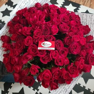 Розы Кения 27 сом в Бишкек