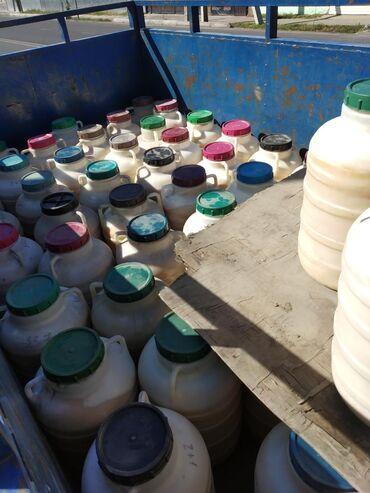 Чистый горный мёд из токтогула 100 гарантия чистый доставка по городу