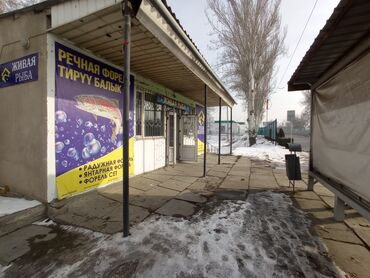 радуга магазин в Кыргызстан: ПРОДАЮ !!! Читать внимательно ! ✓Продаю действующий рыбный бизнес в