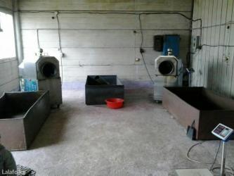 упаковочный в Кыргызстан: Продается фасовочно-упаковочный аппарат и аппарат по обжарки семечек