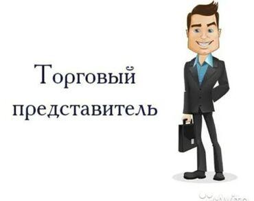 Работа торговый агент - Кыргызстан: Торговый агент. С личным транспортом. Неполный рабочий день. Кок-Жар