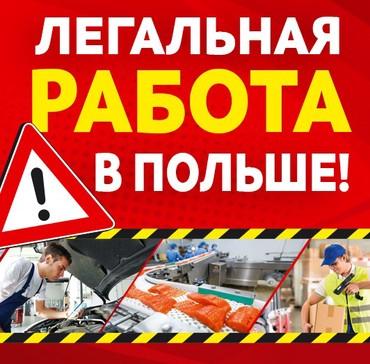 Работа в мясокобинат в Польше. в Бишкек