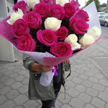 Розы, опт цена прямая поставка из Голландии Согдиана+ в Бишкек