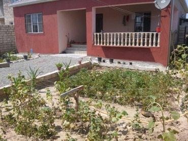 Bakı şəhərində Sabuncu rayonu,Visnyovka - Albaliliq bag evi.