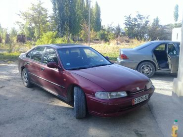 Honda Accord 1995 в Кок-Ой