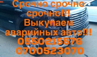 ad-image-43103117