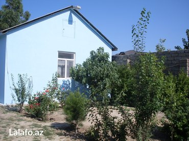 средство для дачных туалетов в Азербайджан: В посёлке шаган на 6 сотках дом 7х8 метров, 2 комнаты кухня с