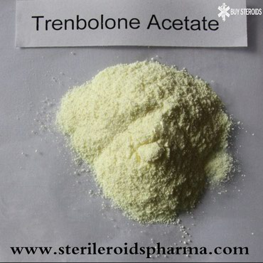 1ml trenbolone acetate oil base solution 100mg from sper@bulkraws.com σε Lamia