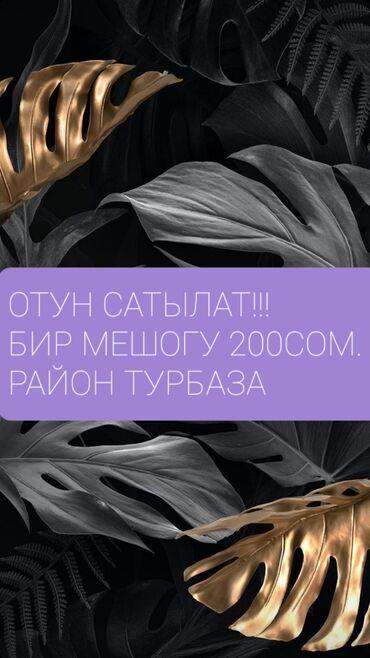 Район Турбаза. Советская-Фере. Звоните по этому номеру