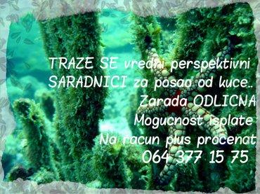 *POTREBNI VREDNI PERSPEKTIVNI SARADNICI ZA PROIZVODE ..NAJBOLJE IZ - Beograd
