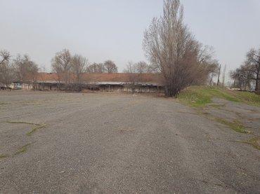 в Беловодское - фото 2