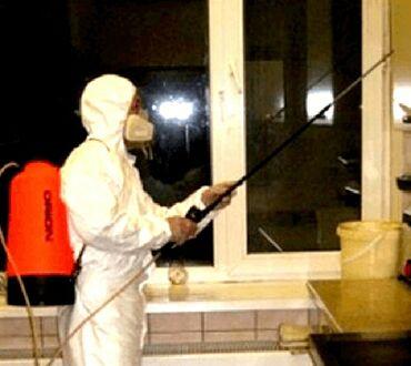 здоров мом крем бишкек в Кыргызстан: Дезинфекция, дезинсекция | Клопы, Тараканы | Квартиры, Кафе, магазины, Дворы
