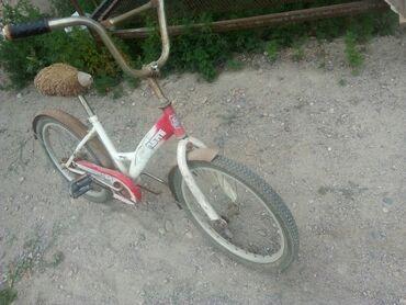 Спорт и хобби - Студенческое: Велосипед