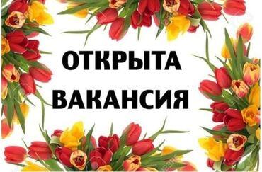 b u rybalka в Кыргызстан: Оператор Call-центра. С опытом. 5/2. Гоин