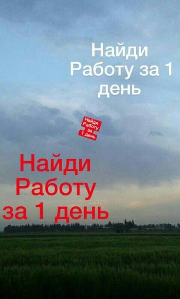 Требуется содрудники в крупную в Бишкек