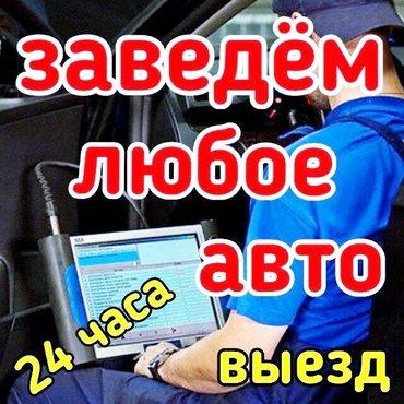 Автоэлектрик с выездом 24часа по в Лебединовка