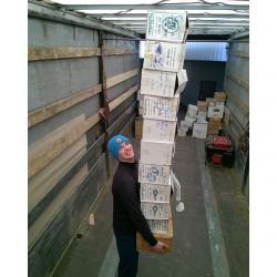 Требуются грузчики на склад на Аламединском рынке, до 20 лет, на