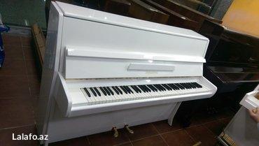 Bakı şəhərində Piano ve royalların 5 il zəmanətlə satışı, çatdırılması,