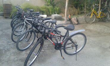 Спорт и хобби - Беловодское: Продаю велосипеды привазной Кореи оптовой цена