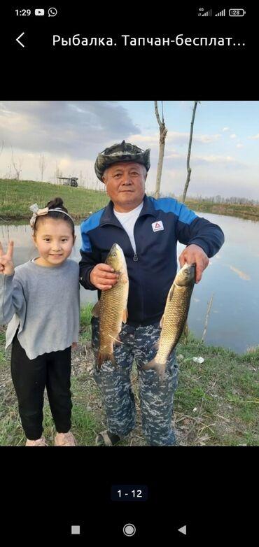1054 объявлений: Рыбалка.Тапчан-бесплатно!Семейный отдых!место дляШашлыка с
