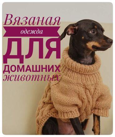 ручной отпариватель бишкек in Кыргызстан   УТЮГИ: Свитера,комбинезоны,платья ручной вязки для собак и кошек разных
