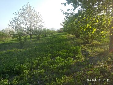 Продажа участков 70 соток Для сельского хозяйства, Возможен обмен, Бялядия (муниципалитет)