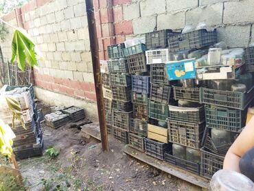 стеклянные банки бишкек in Кыргызстан | ДРУГАЯ ПОСУДА: Стеклянные банки 0.5 1 2 3 литра