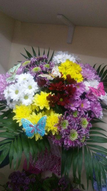 Цветы на все случаи жизни!!! Весенние в Бишкек