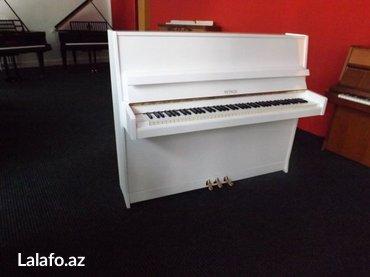 Bakı şəhərində Çexiya istehsalı Petrof piano - müxtelif reng ve modellerde 5 il