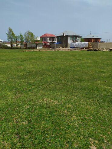 Torpaq sahələrinin satışı 12 sot Kənd təsərrüfatı, Mülkiyyətçi, Kupça (Çıxarış)