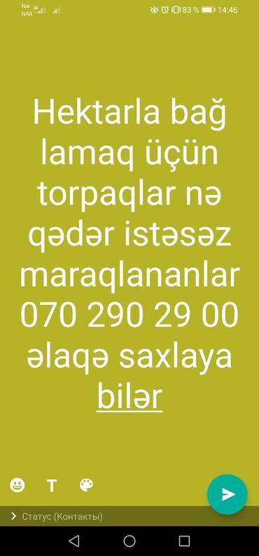 hektarla torpaq satilir - Azərbaycan: Torpaq sahələrinin satışı sot