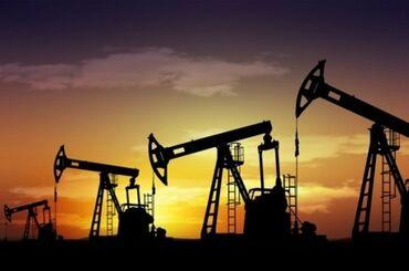 Работа - Полтавка: В крупную нефтяную компанию срочно требуются сотрудники, открыты следу