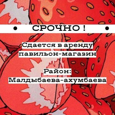 ▪ сдаю в аренду павильон-магазин ▪  Район: Малдыбаева-Ахунбаева (напро