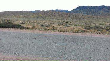 Продается участок земли до 20га. На юге озера Иссык-куль (Тонский в Боконбаево