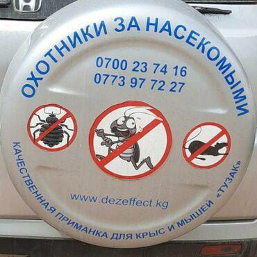 коврики для мыши razer в Кыргызстан: Уничтожение насекомых клоп блох таракан крыс и мышей. Дезинфекция