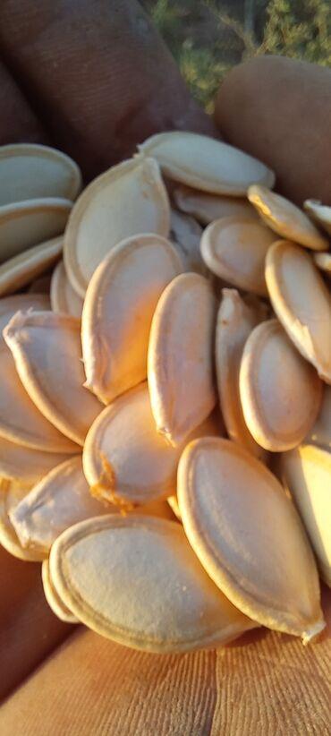 73 объявлений: Сухофрукты, орехи, снеки
