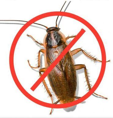 купить сенсорный диспенсер для жидкого мыла в Кыргызстан: Отпугиватель тараканов Ультрозвуковой отпугиватель тараканов. Для