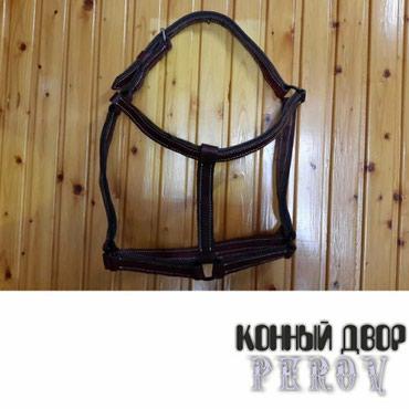 Недоуздок кожаный дублированный в Бишкек