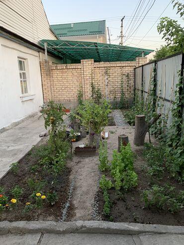 продам дом беловодск в Кыргызстан: Продам Дом 102 кв. м, 3 комнаты