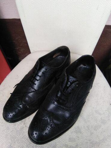 Muske cipele 41 - Srbija: Muske italijanske kožne cipele