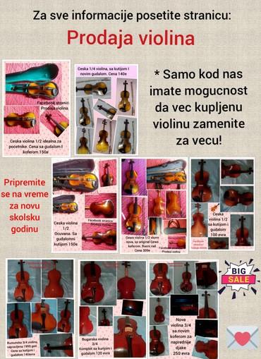 Sport i hobi - Pirot: Fb. stranica: Prodaja violina Veliki izbor djackih i profesionalnih vi