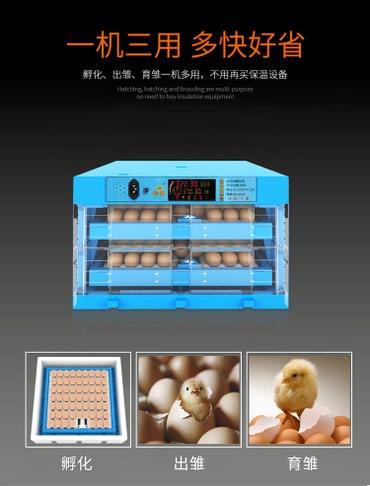 Инкубатор автоматический для куриных в Бишкек