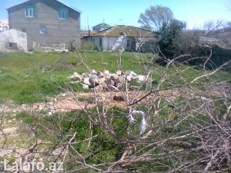 Bakı şəhərində Bilgehde deyerinden ucuz torpaq satilir. Denize mektebe baxcaya