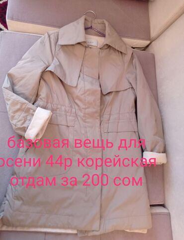 Детский мир - Кыргызстан: Вещи в основном брендовые, купленные в Германии, в хорошем состоянии и